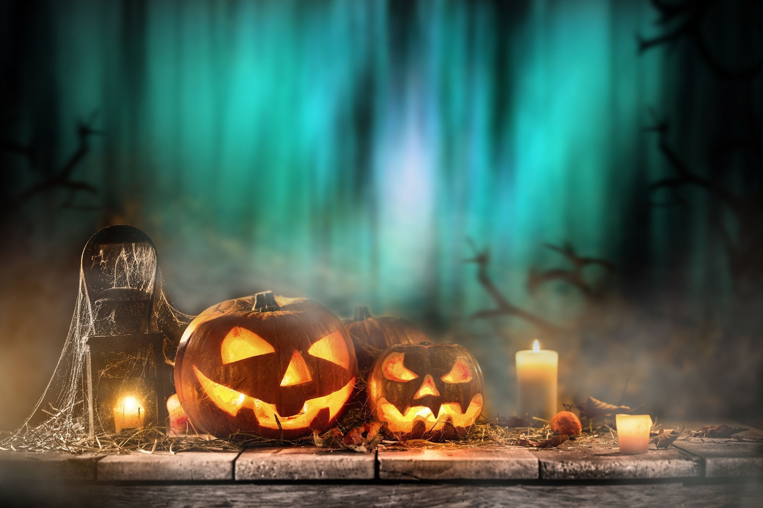 5 Scary Background Screening Statistics