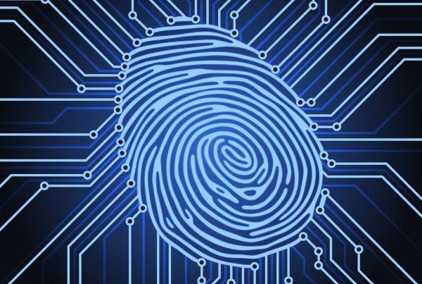 fingerprint identification system electronics scheme