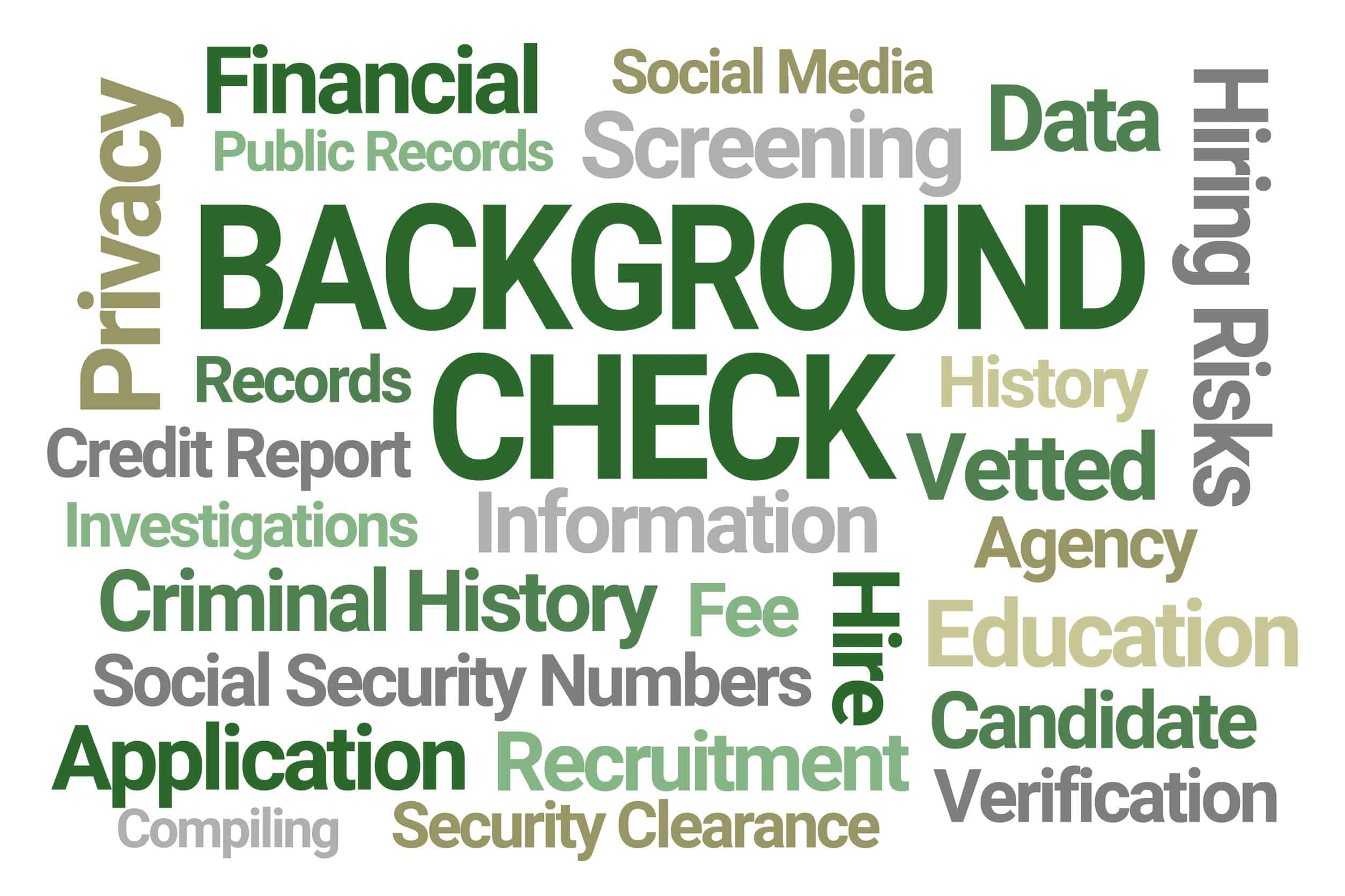 Background Check Word Cloud on White Background